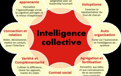 L'intelligence collective en image