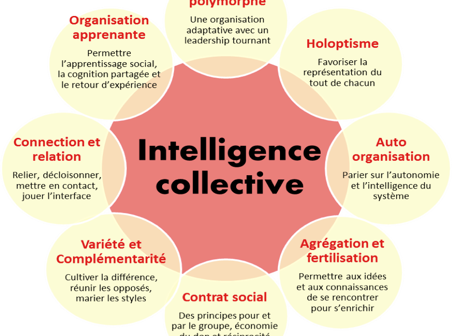 L'intelligence collective en image